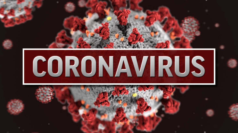 SARS-CoV-2 przekracza barierę krew-mózg w modelu zwierzęcym
